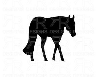 340x270 Quarter Horse Etsy