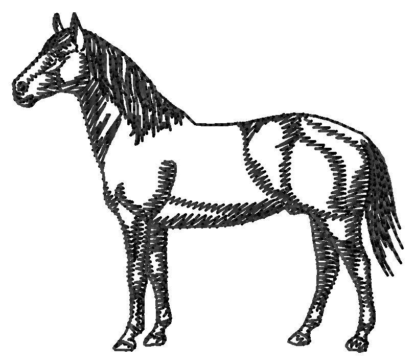 812x712 American Quarter Horse Silhouette Embroidery Design Annthegran
