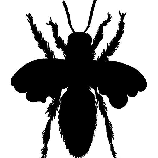 Queen Bee Silhouette