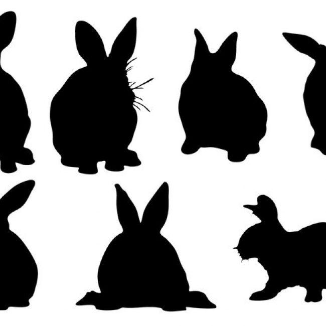 650x650 Free Vector Free Rabbit Silhouette Vector