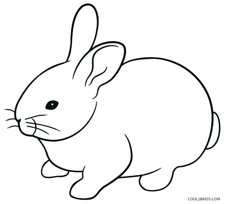750x679 Rabbit Coloring Pages Free Printable Amazing Rabbit Coloring Page