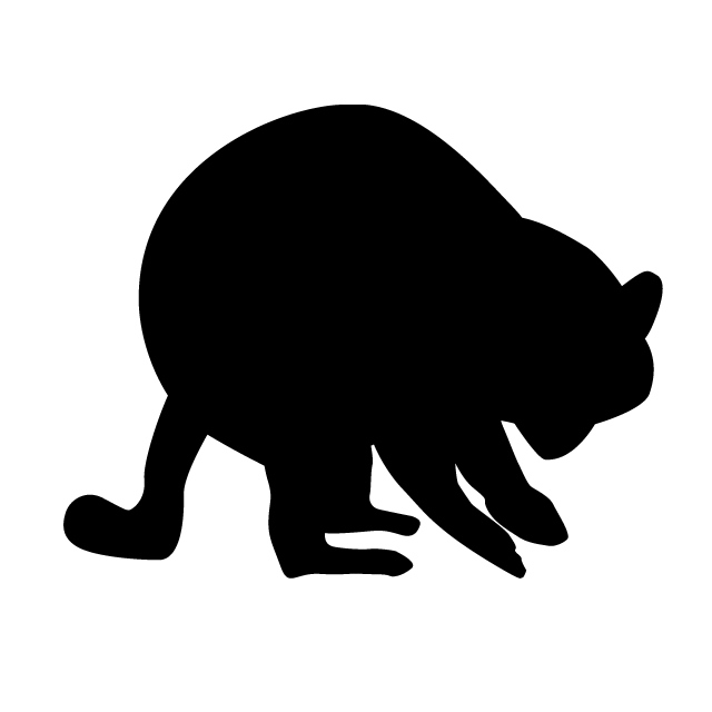 640x640 Raccoon Animal Silhouette Free Illustrations