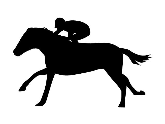 640x480 Horse Racing Gambling Racehorse Hobby Interest Free