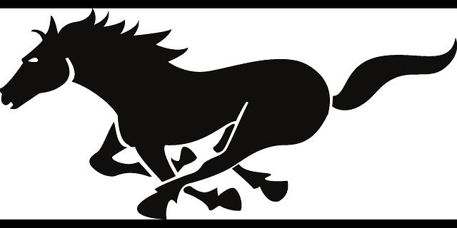 640x320 Horse Racing Silhouette 4.jpg