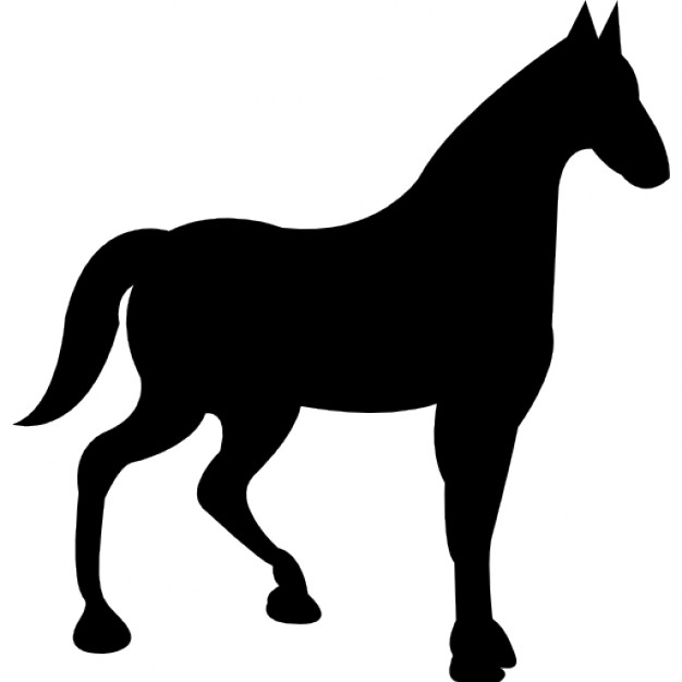 626x626 Race Horse Black Silhouette Icons Free Download