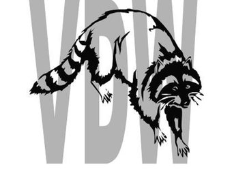 340x270 Racoon Svg Etsy