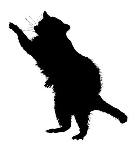 442x480 Image Result For Raccoon Face Silhouette Animal Silhouettes
