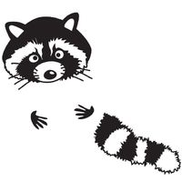 200x200 Mr. Raccoon