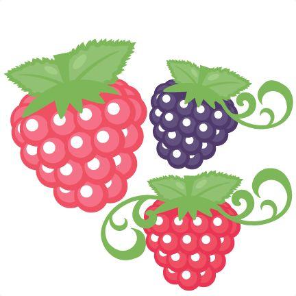 Raspberry Silhouette