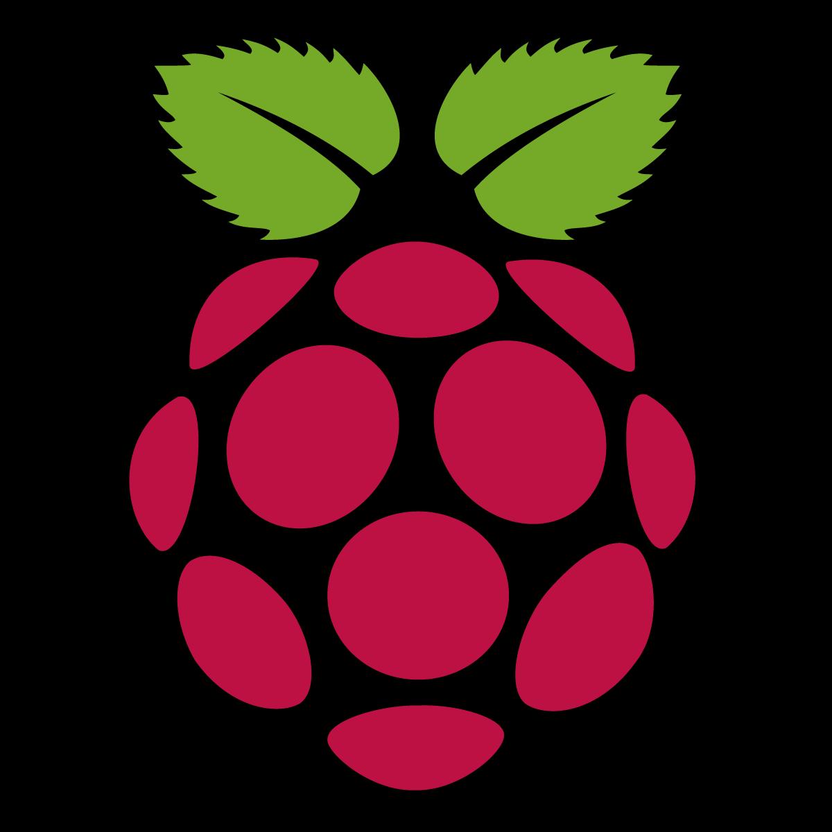 1200x1200 Raspberry Pi Icon Logo Vector Free Vector Silhouette Graphics Ai