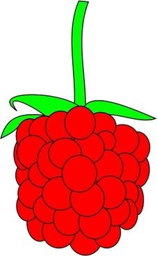 226x368 Raspberry Vector Free Vector Download (41 Free Vector)