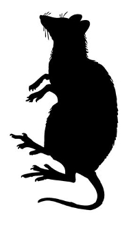 191x330 Rat Silhouette 3 Decal Sticker