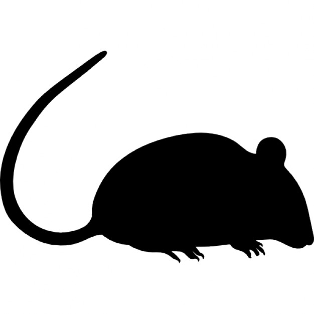 626x626 Rat Silhouette Icons Free Download