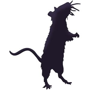 300x300 Silhouette Design Store Rat Silhouette Animals Are Awesome