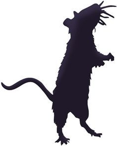236x293 Some Fantastic Design Set Of Rats Available Here In This Rat