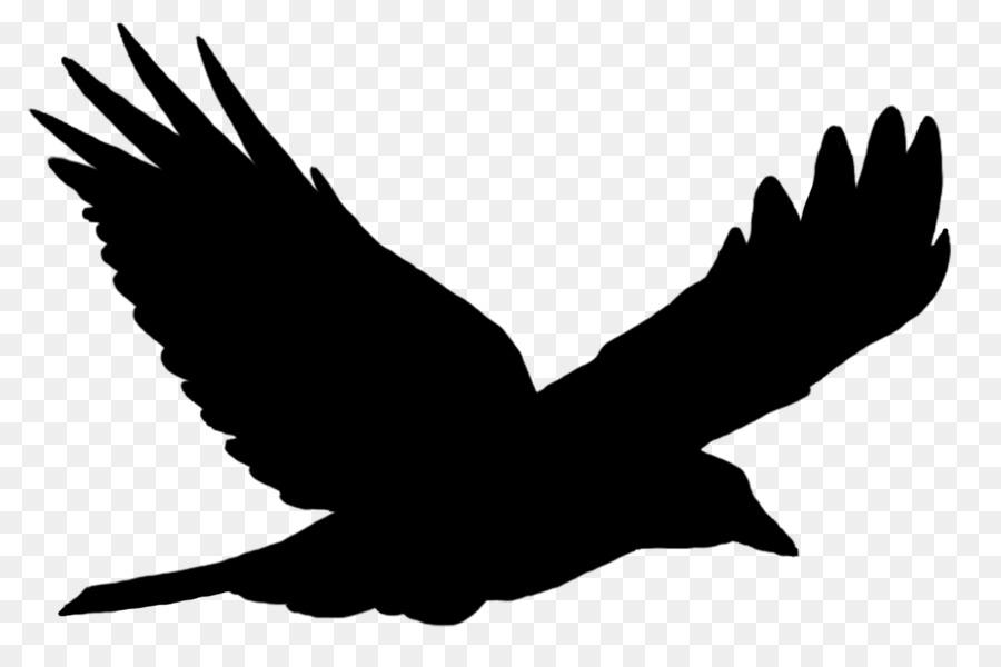 900x600 Bird Flight Bird Flight Common Raven Clip Art