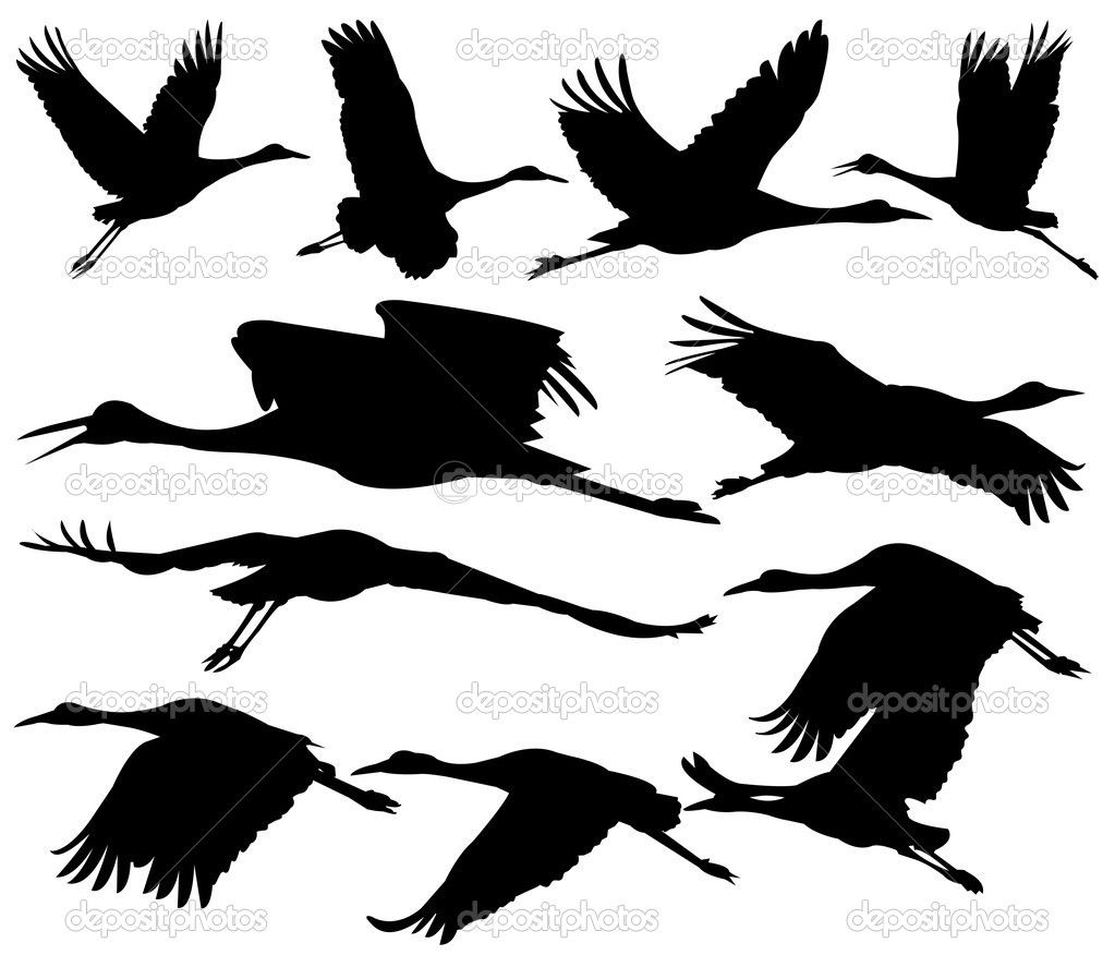 1023x887 Free Download Sandhill Crane Silhouette Clipart For Your Creation
