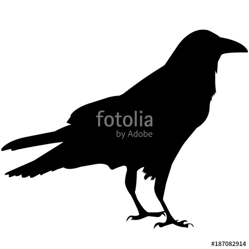 500x500 Raven Silhouette Vector Graphics Stock Image And Royalty Free