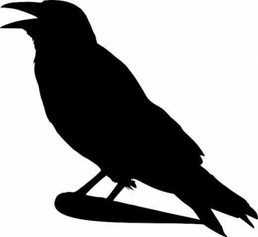 520x479 Free Printable Crow Silhouettes Crow Silhouette, Craft Free