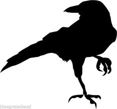 236x220 Raven Silouette Black Formal Ravens, Crows And Tattoo