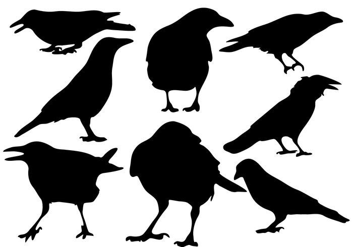 700x490 Free Raven Silhouette Vector 116532