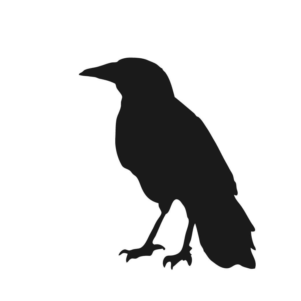 1042x1042 Raven Silhouette Clip Art