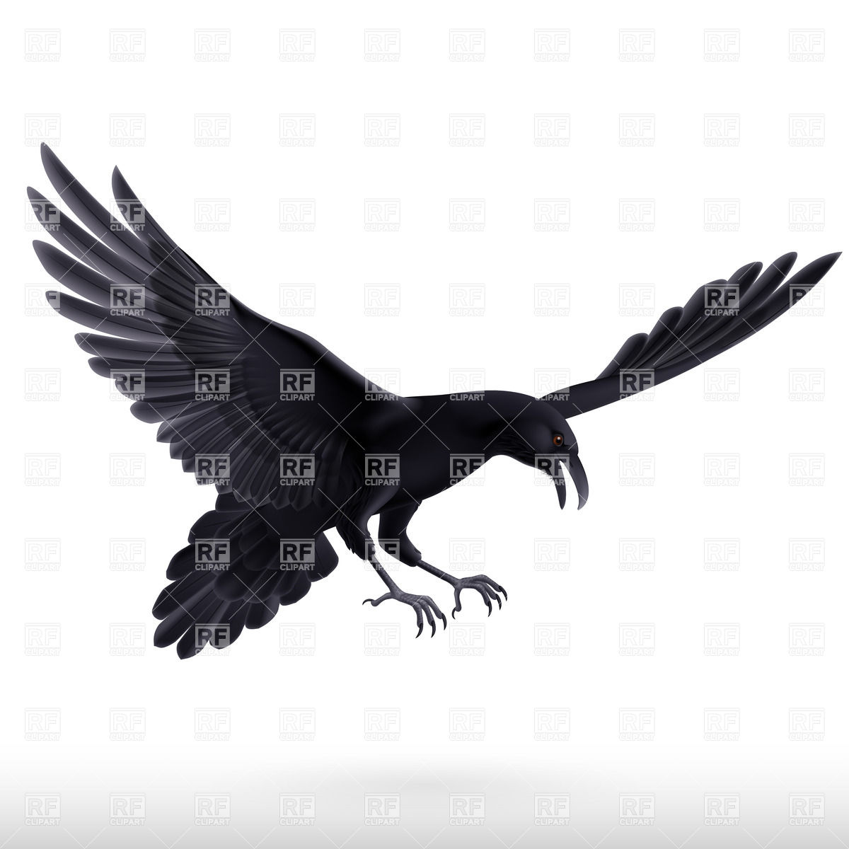 1200x1200 Aggressive Attacking Black Raven With Spread Wings Royalty Free