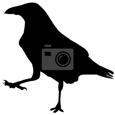 400x400 Raven Silhouette Vector Graphics Papier Peint Papiers Peints