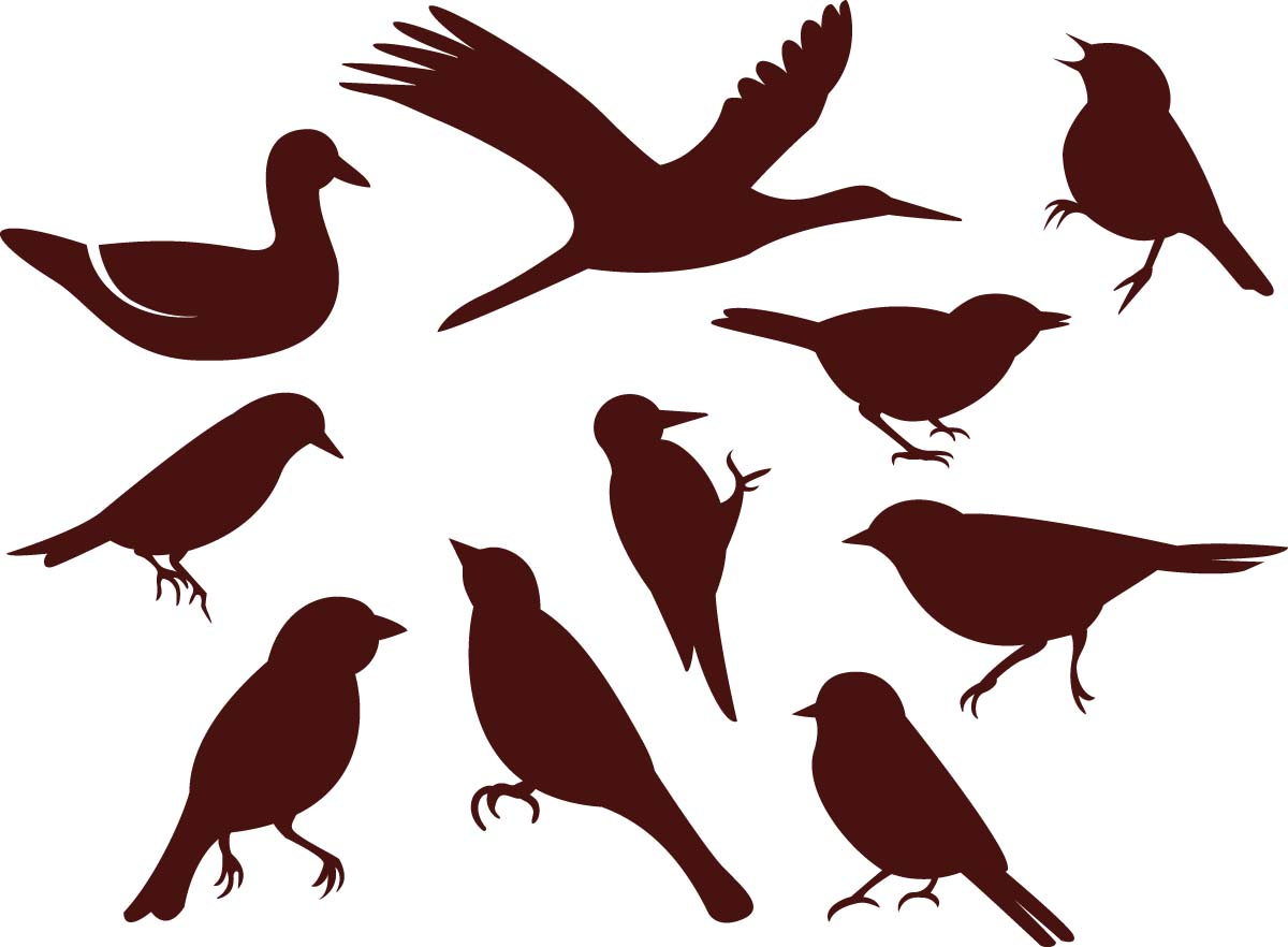 1200x882 Simple Birds Silhouette Vector Set Free Download