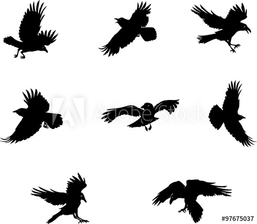 500x437 Crow, Raven, Flying, Vector, Silhouette, Image