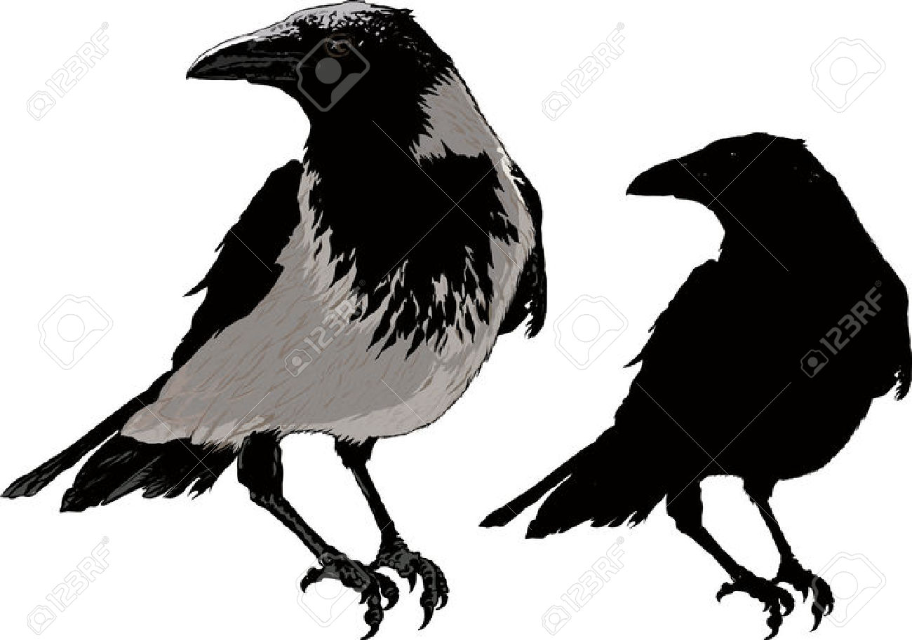 1300x913 Raven Free Clipart Silhouette
