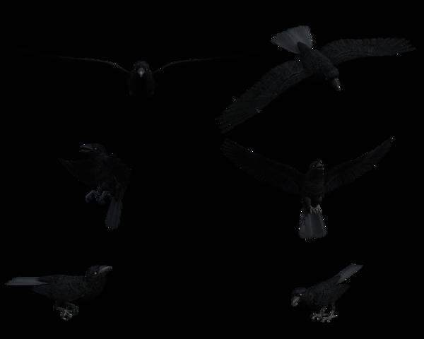 600x480 Raven Clipart Flight Art