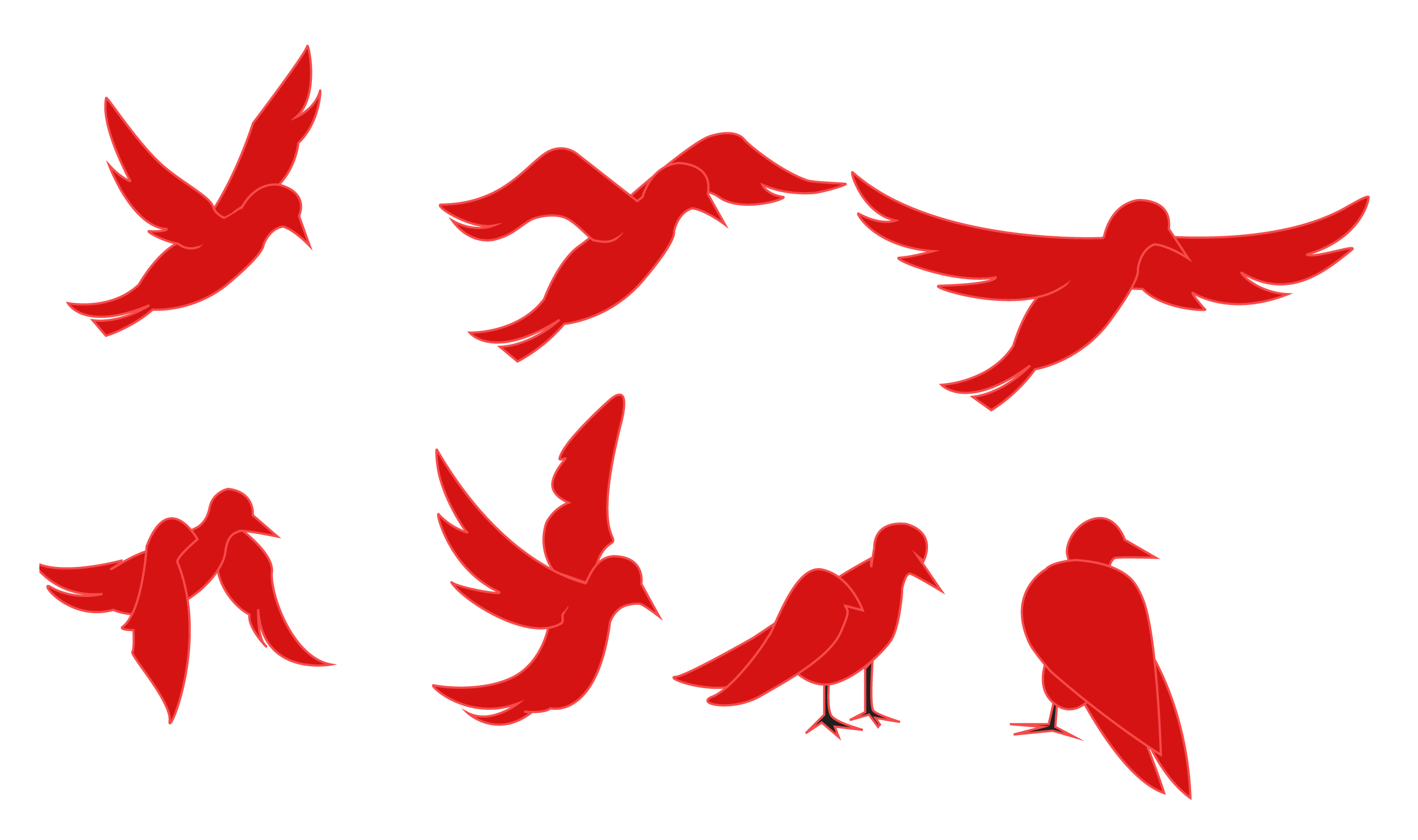 2700x1600 Animation Of A Silhouette Of A Bird On A White Background Stock