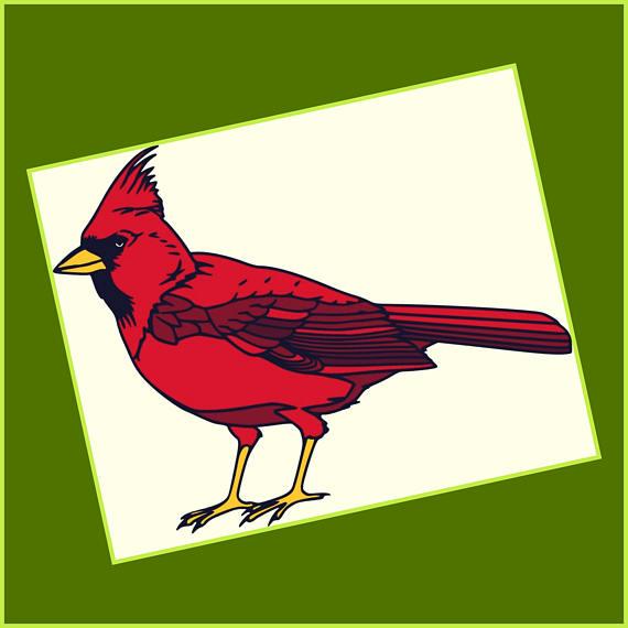 570x570 Cardinal Svg Cardinal Layered Svg Png Jpeg Dxf Files Red