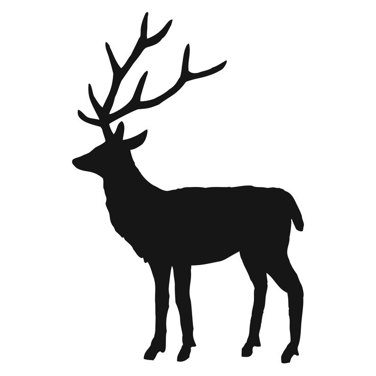 736x736 Free Stag Silhouette, Hanslodge Clip Art Collection