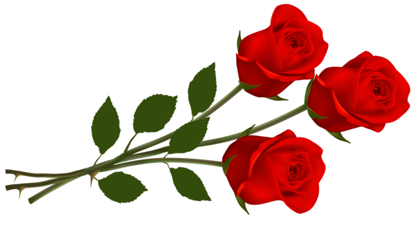 600x336 Large Red Roses Png Clipartu200b Gallery Yopriceville