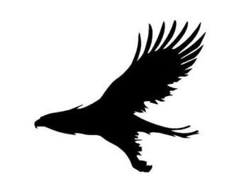 340x270 Flying Hawk Etsy
