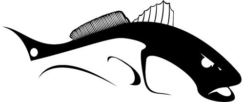 500x209 New! Bull Redfish Decal Available