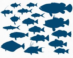 236x187 Fish Silhouette Vectors, Photos And Psd Files Free Download