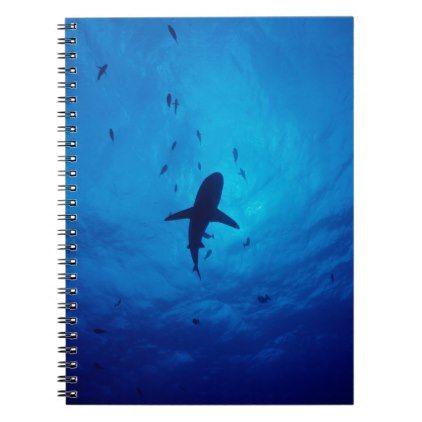 422x422 A Silhouette Of A Grey Reef Shark. Notebook Shark, Silhouettes