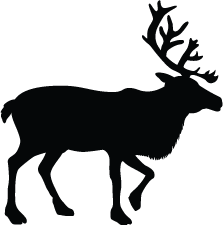 223x225 Deer Silhouettes Silhouettes Of Deer Free
