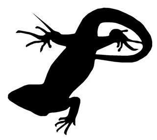 320x286 Lizard Silhouette 10 Decal Sticker
