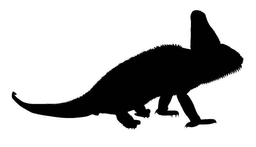 834x480 Lizard Silhouette 2 Decal Sticker