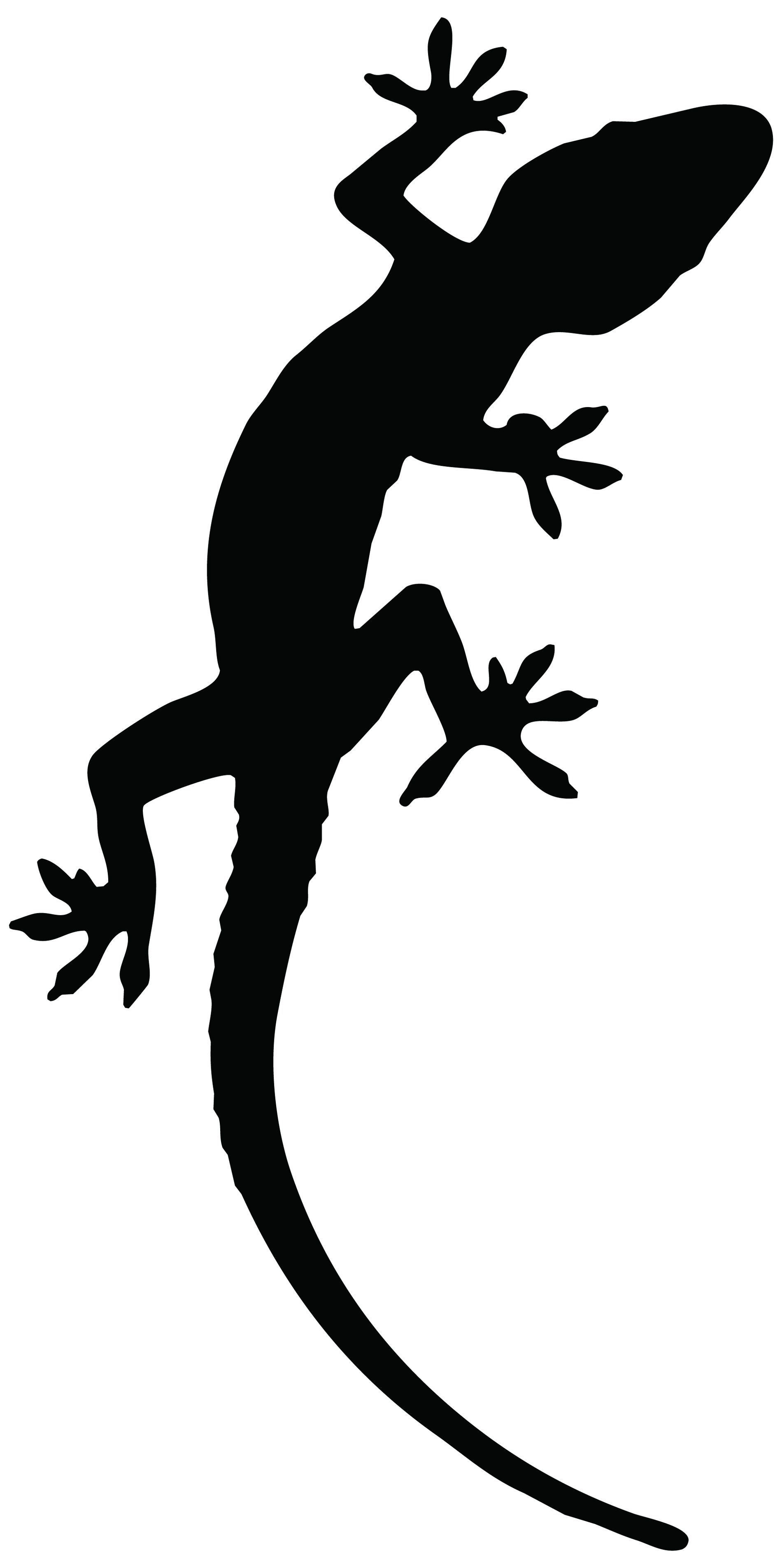 1900x3809 Reptile Lizard Tattoo Stencil Photo
