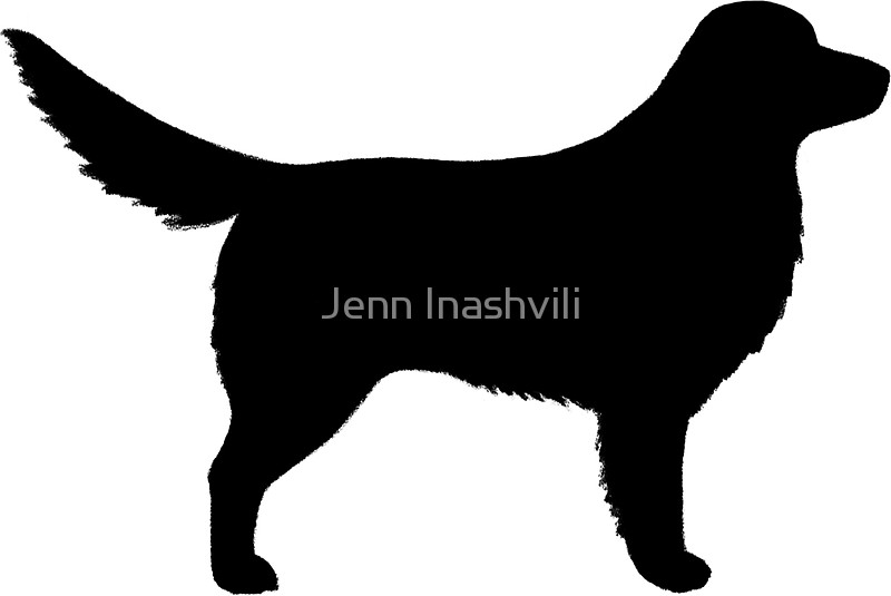 800x535 Nova Scotia Duck Tolling Retriever Silhouette(S) Stickers By Jenn