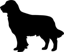 256x207 Retriever Silhouette