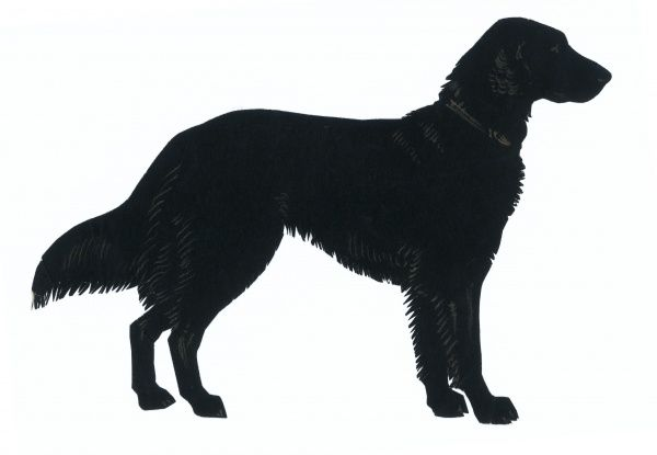 600x415 Silhouette Of A Labrador Retriever, Standing In Profile