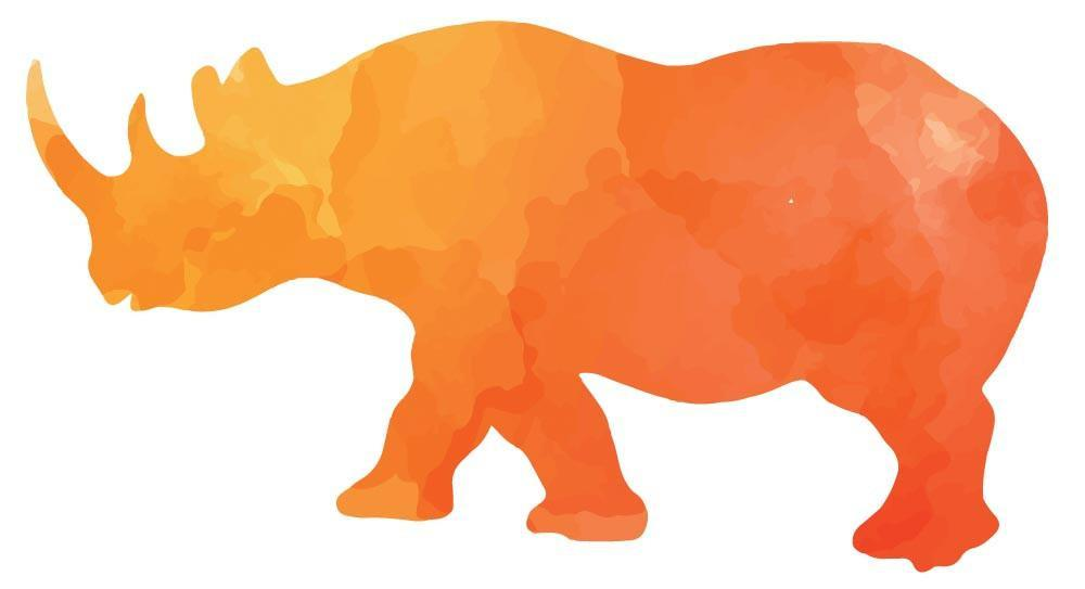1000x543 Colorful Rhino Silhouette Wall Decal Canvas Art Rocks