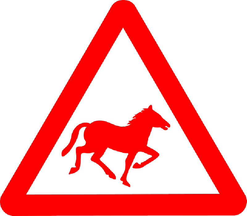 800x701 Silhouette, Signs, Triangle, Horse, Road, Information