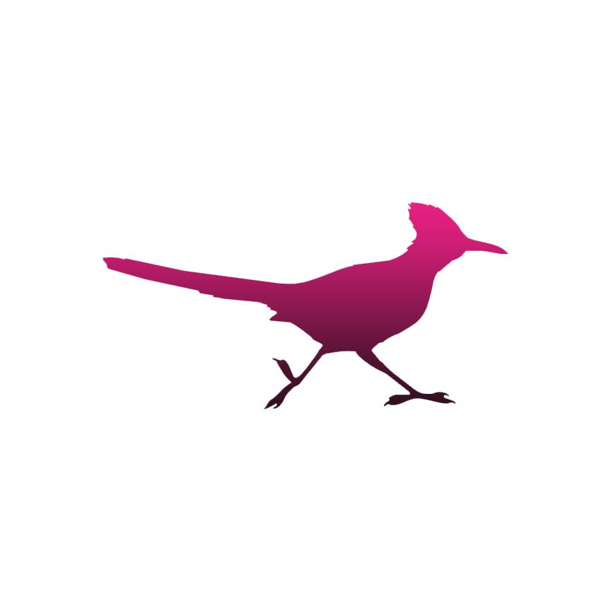 864x864 Roadrunner Ground Cuckoo Decal Sticker Choose Pattern + Size